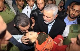 Gaza 14