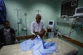 Gaza 19