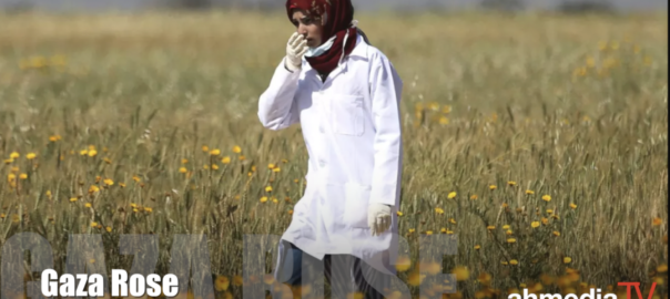 Razan al-Najjar, Gaza Rose