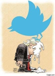 Big Bird Twitter (1)